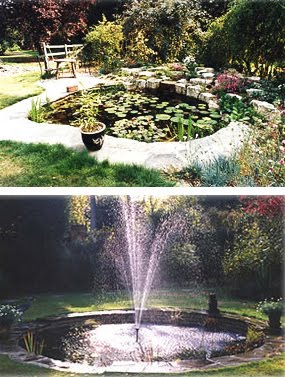 pond_and_fountain