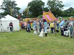 Save the Date – 10th of June –  Sarratt Village Day & Dog Show